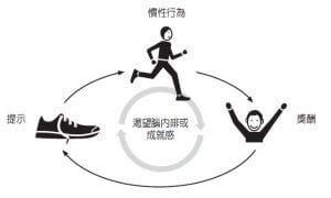運動習慣的養成過程
