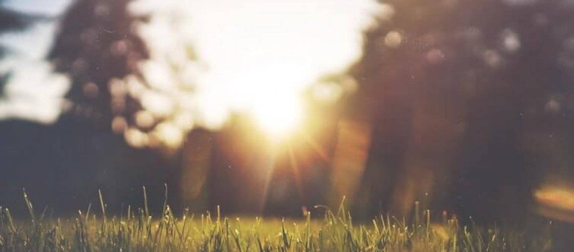 m6rT4MYFQ7CT8j9m2AEC_JakeGivens - Sunset in the Park